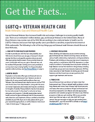 Gay and Bisexual Male Health Care Fact Sheet cover(751 KB, PDF)